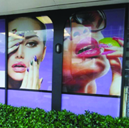Commercial Window Displays